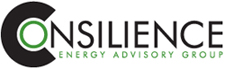 Consilience Energy Advisory Group